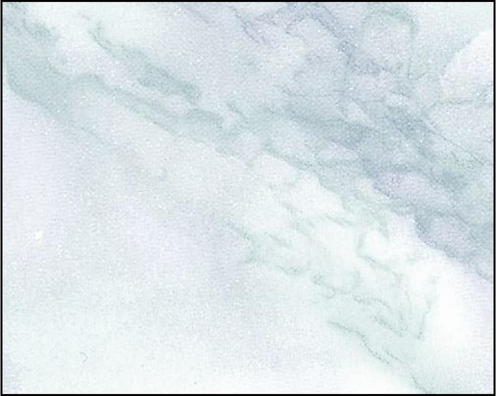 SOLITÉRNÍ KAMENY   Mramor bílý   KAM-GARDEN Přírodní kámen